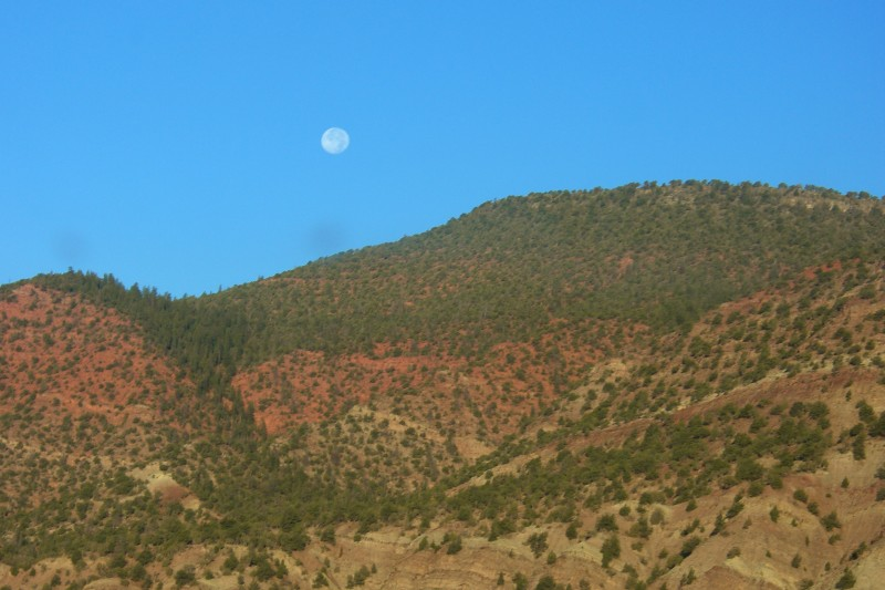 Colorful landscape against a clear morning sky and full moon.